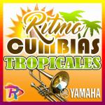 Ritmos de cumbia Mexicana al son de los artistas mas sonados 【PACK de 20 acompañamientos】